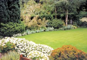 Just using white summer bedding is very effective in such a large garden